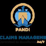 Pandi_Logo_180px